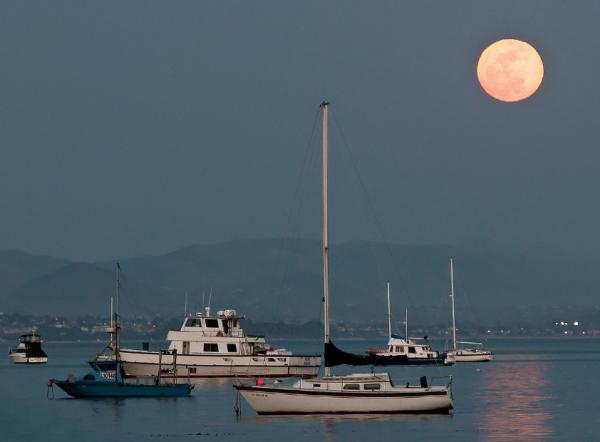 Hold a kikötő felett